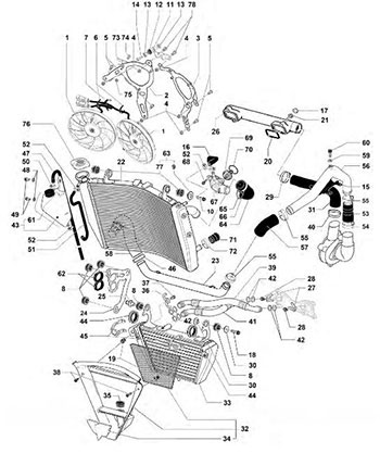 Honda Motorcycles Atvs Genuine Spare Parts Catalog