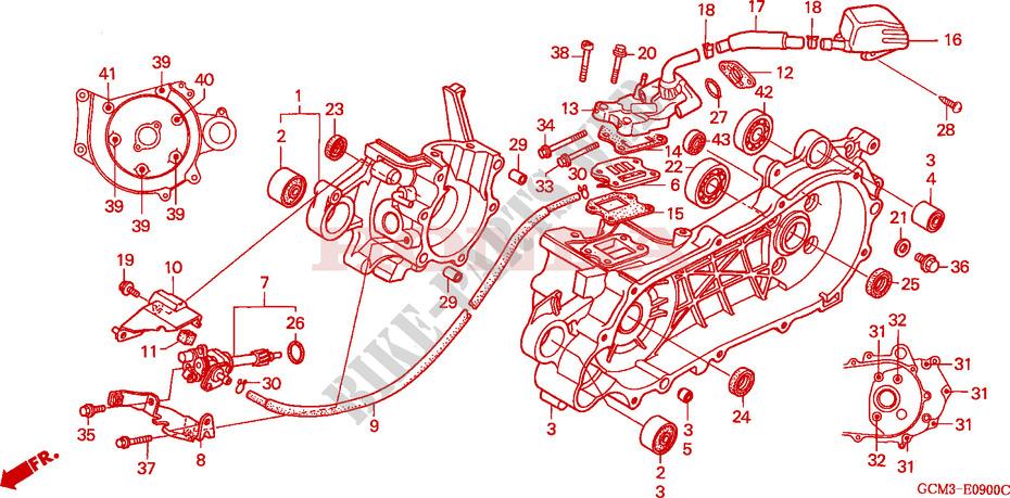 Outstanding Honda X8R Wiring Diagram Wiring Diagram Library Wiring 101 Cominwise Assnl
