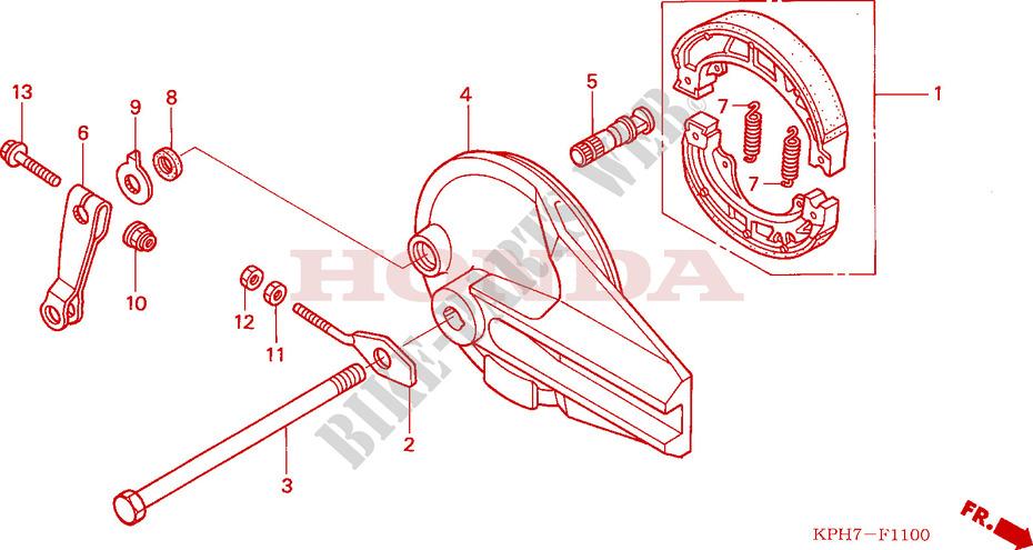 Rear Brake Panel  Anf1253  5  T5  For Honda Innova 125 2005