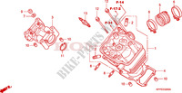 CYLINDER HEAD (CBR125R/RS/RW5/RW6/RW8) Engine 125 honda-motorcycle CBR 2006 E__0200