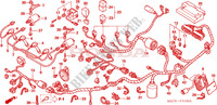 WIRE HARNESS for Honda CBR 1100 SUPER BLACKBIRD TWO TONE 2005