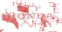 RADIATOR Frame 1500 honda-motorcycle GOLD-WING 1992 F__3500