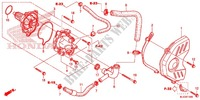 WATER PUMP Honda motorcycle microfiche diagram CBR600RAD 2016 CBR 600 RR ABS HRC