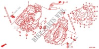 CRANKCASE   OIL PUMP for Honda CRF 250 L RED 2013