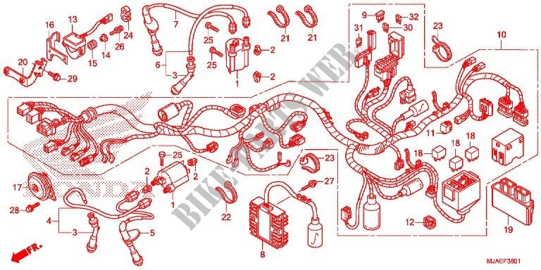 Wire Harness  Vt750c2b  C  For Honda Shadow Vt 750 Spirit