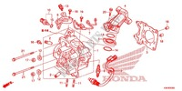 CYLINDER/CYLINDER HEAD Honda motorcycle microfiche diagram WW125EX2F 2015 PCX 125 LIMITED EDITION