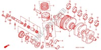 CRANKSHAFT/PISTON