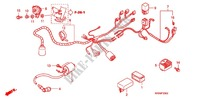 WIRE HARNESS (ANF100DR/SR/MSR) for Honda WAVE 100 MSR, Front disk 2008